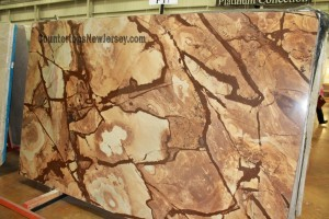 Quartzite Slab Stone Wood